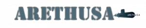 Vendor Logo of Arethusa VPN